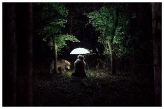 Wolf im Schafspelz mit Wolf